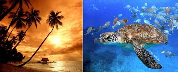 Таиланд, море, пляж, Пхукет, Бангкок