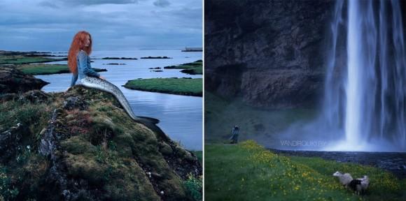 Селедка из Норвежские фьорды, Норвегия